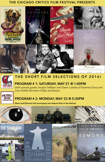 ccff-2016-shorts-poster