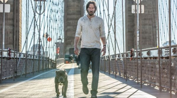 johnwick2doggonit