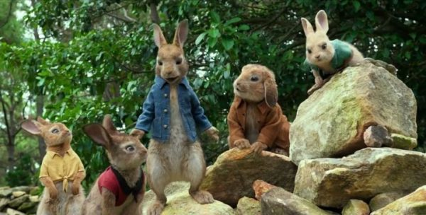peterrabbitfamily